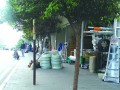 重庆市九龙坡区白鹤村违规搭建彩钢板房